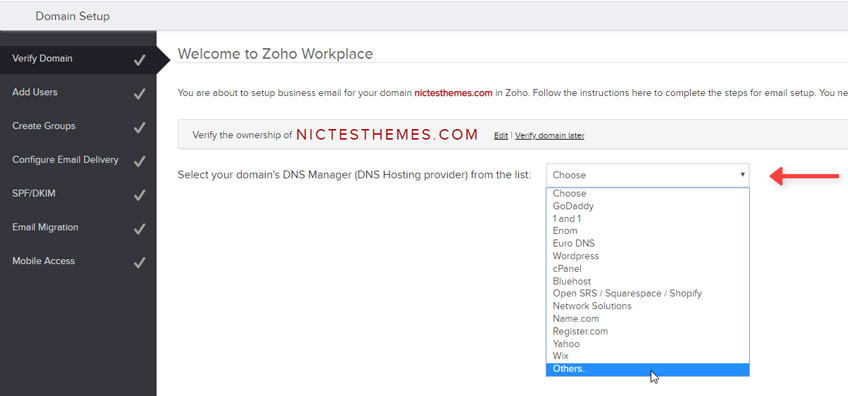 Seleccionar DNS Manager Zoho Mail